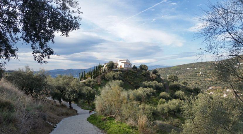 6514 VI3 prestigious villa in Alcaucin (1,5)